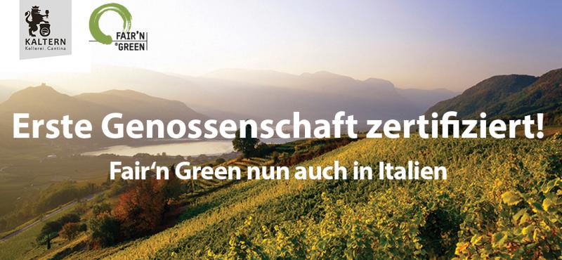 Kellerei Kaltern Fair'n Green zertifiziert. Foto vom Kalterer See und Weinbergen.