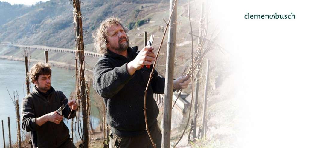 Nachhaltiger Weinbau beim Weingut Clemens Busch mit fair and green