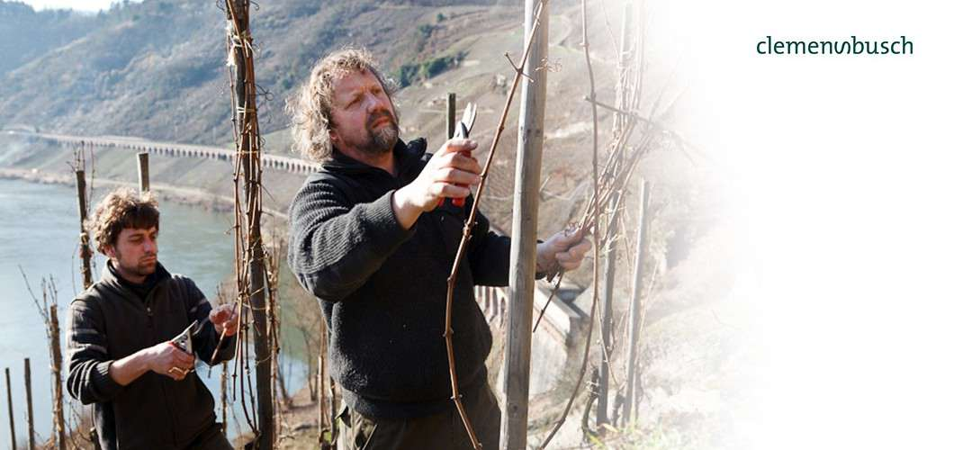 Craftmanship at Wine Estate Clemens Busch Mosel Sustainable Wine from Germany