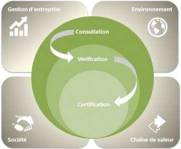 Description de la process FNG