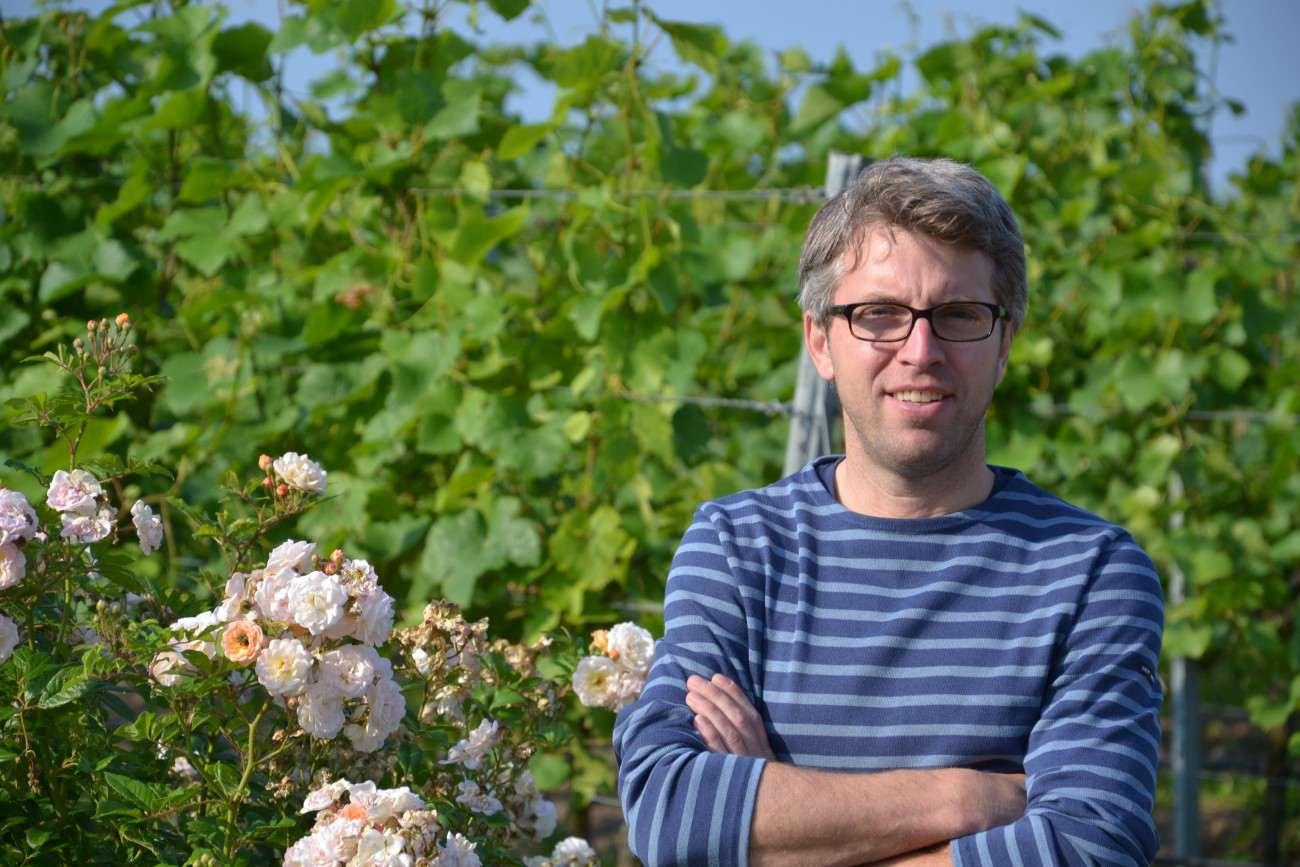 Weingut Egon Schmitt