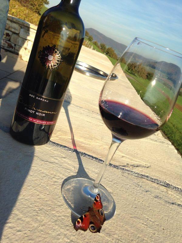 Weingut Buchmann Pinot Noir